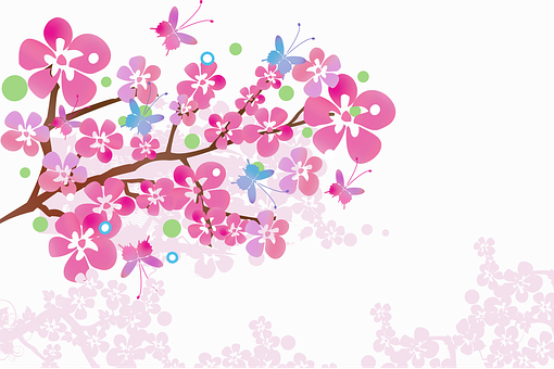 Flowers, Cherry Blossom, Background, Tree, Branch