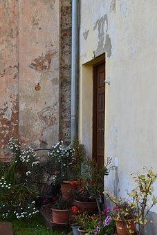 Flowers, Pots, House, Wall, Door, Autumn