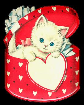 Kitten, Cat, Feline, Box, Gift, Present, Hearts, Bow