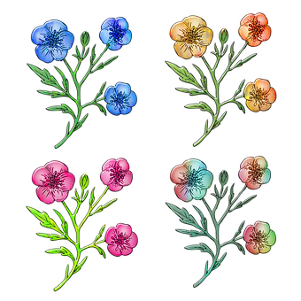 Flowers, Petals, Buds, Leaves, Foliage, Floral