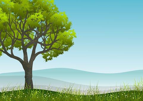 Tree, Field, Foliage, Hill, Mountain