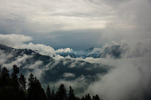 Trees, Mountains, Clouds, Conifers, Coniferous