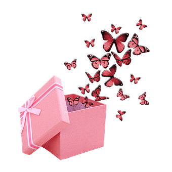 Butterflies, Present, Gift, Wings, Insects, Bugs