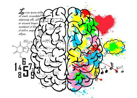 Brain, Left, Logic, Language, Science, Numbers