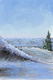 Snow, Tree, Snowy, Winter, Season, Cold