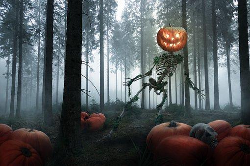 Halloween, Skeleton, Pumpkin, Forest