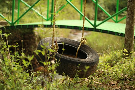 Tire Swing, Swing, Outdoors, Outside, Nature