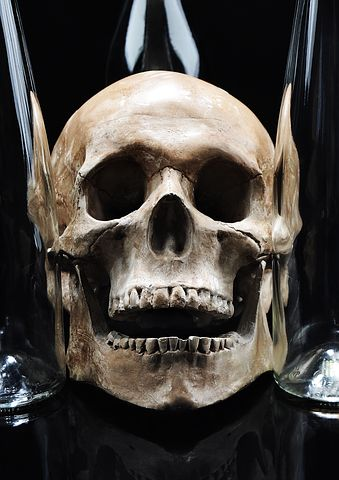 Skull, Glass, Teeth, Bones, Studio, Still Life, Bottle