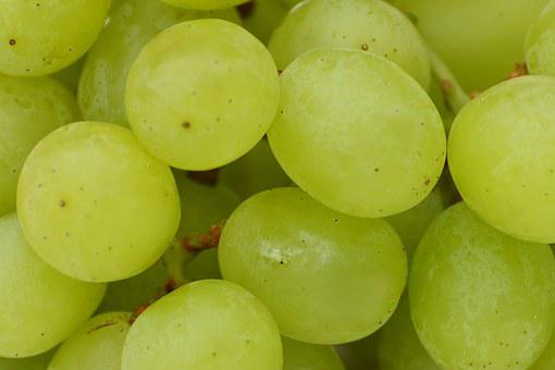Grapes, Fruits, Healthy, Fruit, Food, Green, Sweet