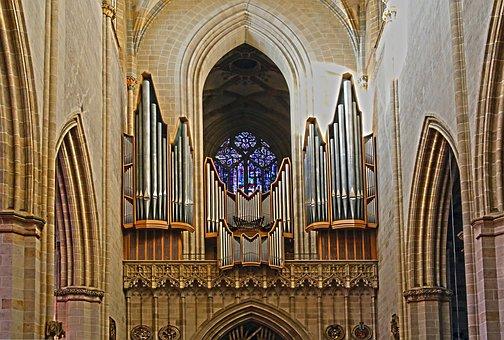 Church Organ, Organ, Ulm Cathedral, Ulm, Organ Whistle