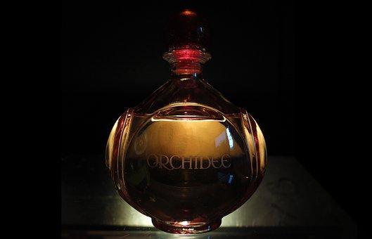Perfume, Bottle, Transmitted Light