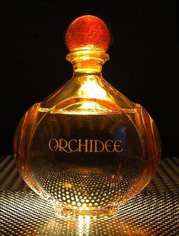 Perfume, Bottle, Light From Below