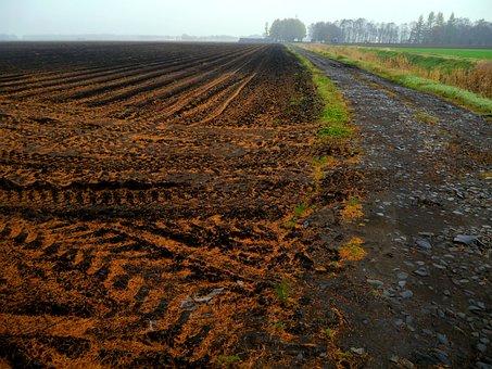 Farmland, Plow, Tractor, Mark, Brown, Obihiro, Hokkaido