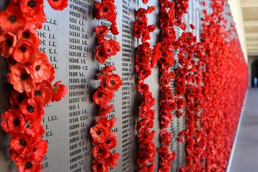 Remembrance, Anzac, Lest, Poppy, Red, Day, World, Wwi