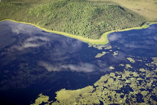 Aerial, River, Lakes, Forest