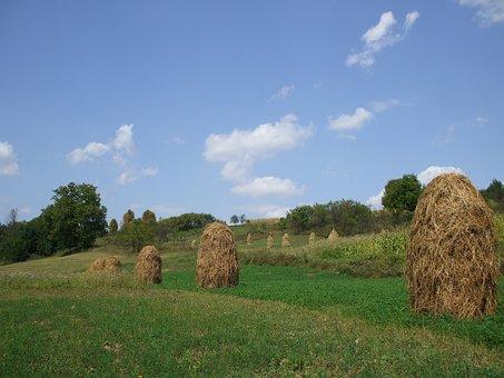 Farmland, Haystacks, Countryside, Rural, Agriculture
