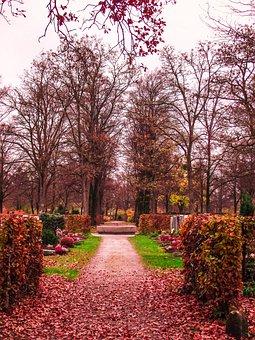 Sky, Munich, Cemetery, Garden, Nature, Flowers, Plant