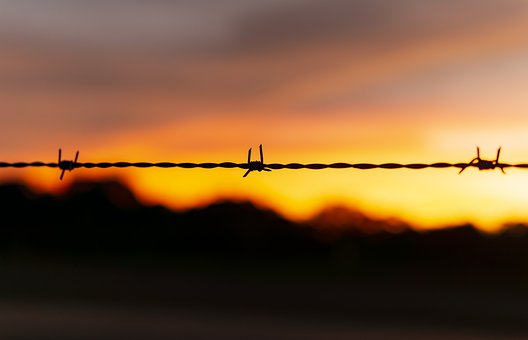 Barbed Wire, Silhouette, Sunset, Wire, Barbed, Fence