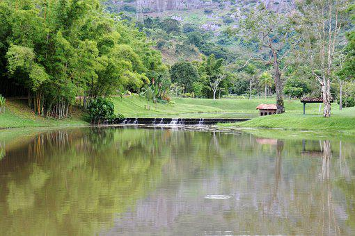 Lake, Farm, Rural, Nature, Landscape, Trees, Field