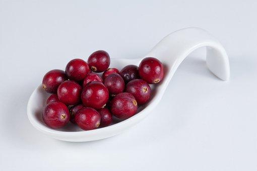 Cranberry, Berries, Harvest, Wild Berries, Healthy