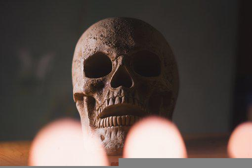 Skull, Head, Halloween, Scary, Death, Skeleton, Dead