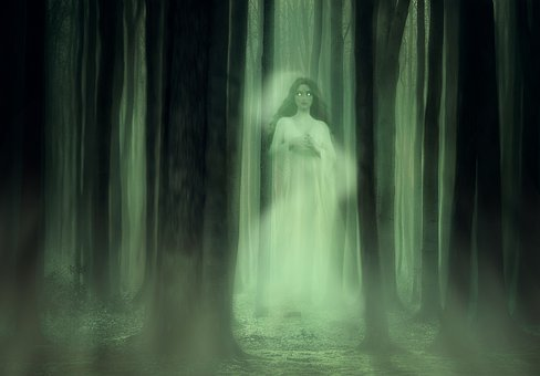 Spirit, Ghost, Trees, Forest, Horror, Fear, Fog