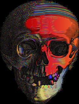 Skull, Head, Cranium, Spooky, Line Art, Scary, Macabre