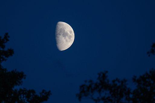 Moon, Sky, Night, Night Sky, Craters, Moonlight, Luna