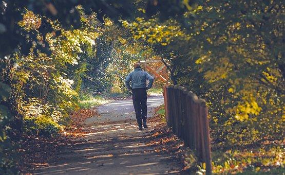 Man, Walking, Park, Path, Trail, Trees, Leaves, Foliage