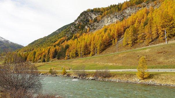 River, Trees, Road, Path, Autumn Leaves, Autumn Foliage