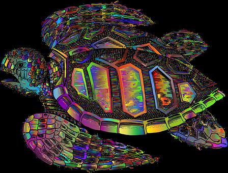 Turtle, Tortoise, Shell, Animal, Sea Turtle, Swim