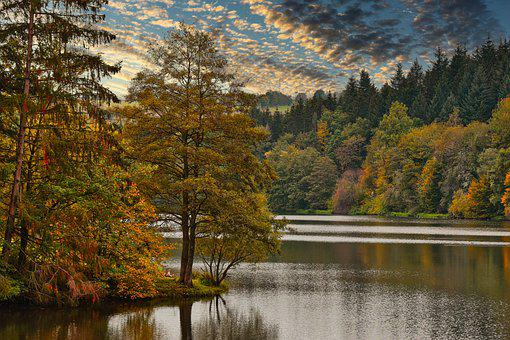 Lake, Trees, Forest, Autumn Leaves