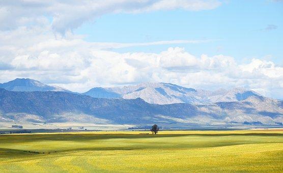 Landscape, Fields, Sky, Clouds