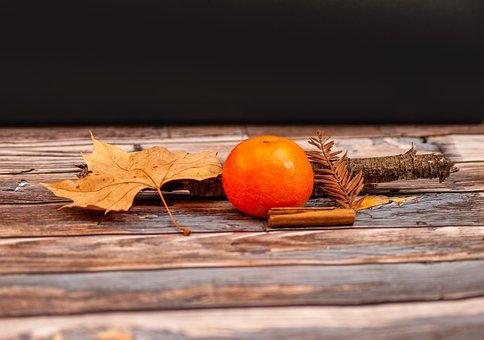 Tangerine, Fruit, Leaves, Dry Leaves, Foliage, Wood