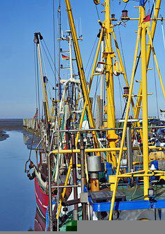 Shrimp, Masts, Boom, North Sea, Coast, Fishing Port