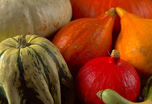 Squash, Vegetables, Food, Healthy
