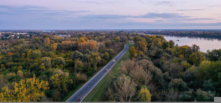 Road, Trees, River, Forest, Woods, Woodlands, Cars