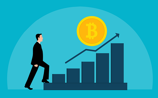 Bitcoin, Investment, Business, Profitability, Chart