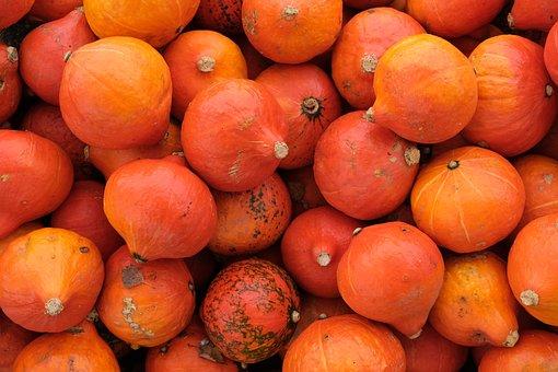 Pumpkin, Squash, Vegetables, Fruit, Harvest, Food