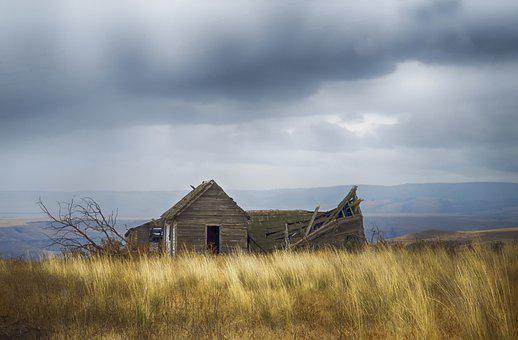 Grass, Homestead, Abandoned, Wild Grass, Old House