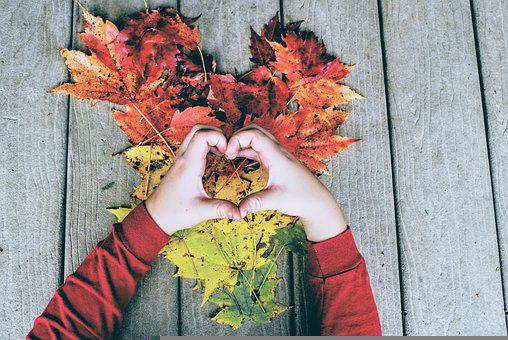 Leaves, Heart, Hands, Fallen Leaves, Dried Leaves
