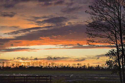Sunset, Farm, Bridge, Brook, Wooden Bridge, Fields