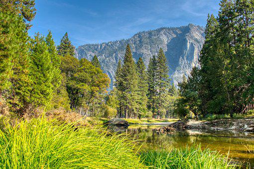 Forest, River, Landscape, Mountains, Trees, Woods