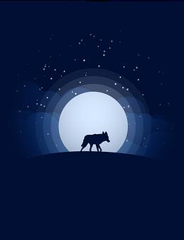 Wolf, Moon, Silhouette, Full Moon, Moonlight, Night Sky