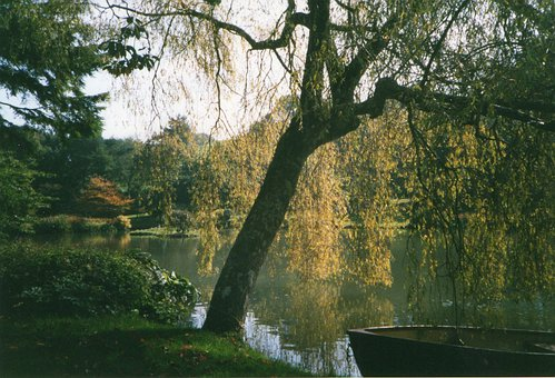 Pond, Trees, Boat, Rowboat, Park, Bank, Deciduous Trees