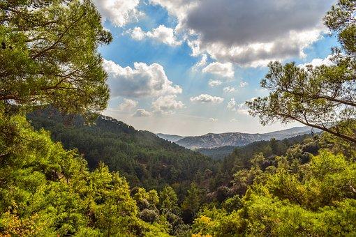 Mountains, Trees, Forest, Mountain Range, View