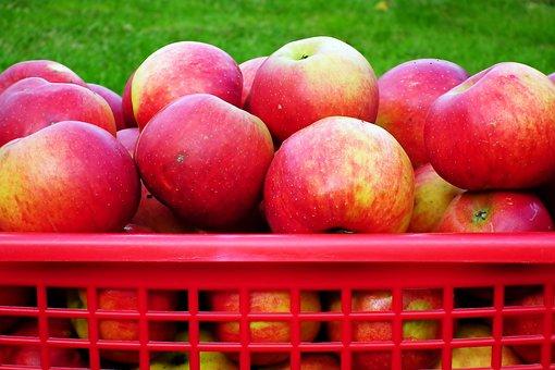 Apples, Basket, Fruits, Basket Of Apples, Produce