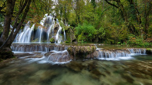 Bach, Waterfalls, River, Trees, Forest, Rainforest