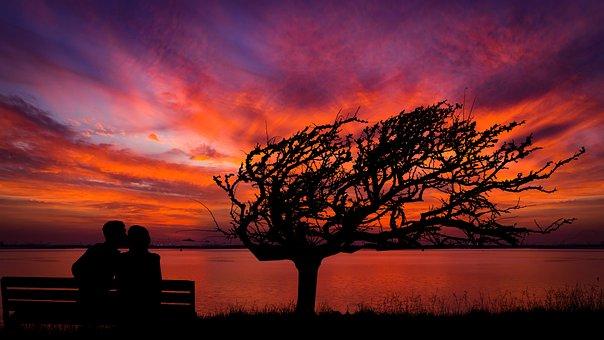 Sunset, Tree, Couple, Silhouettes, Backlighting, Sky