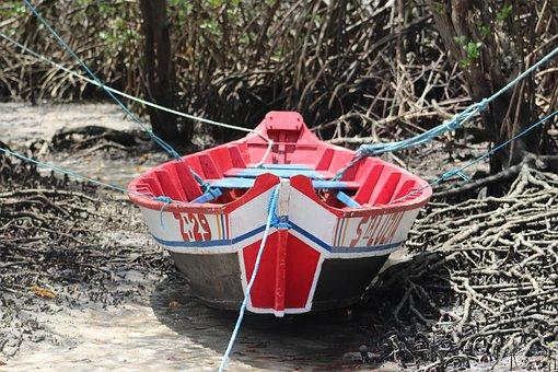 Canoe, Boat, Beach, River, Trees, Salinas, Pará, Brazil